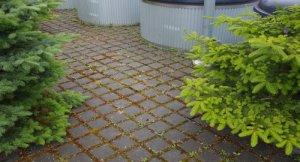 Harvaan aseteltu laatoitus mahdollistaa hulevesien imeyttämisen Tiilitehtaankadulla Vaasassa.