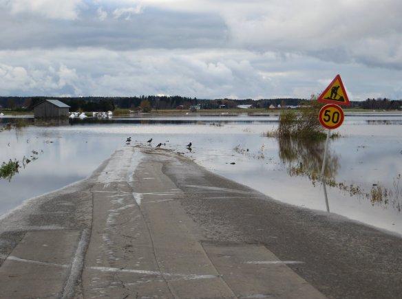 tulvatiedotusta varisten malliin_muokattu.jpg