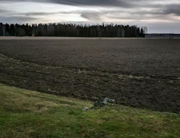 Musta viljelyspelto ja taustalla metsää ja edessa vihreää nurmikkoa. Kuva otettu tammikuussa 2020, eikä lunta näy missään.