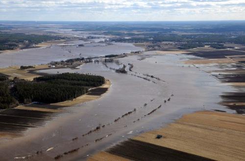 Ilmakuva pohjalaismaisemasta, kun joen vesi on tulvinut pelloille laajoilla alueilla.