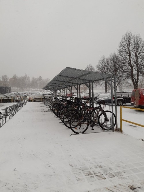 Pyöriä lumisessa säässä pienen katoksen alla rivissä.