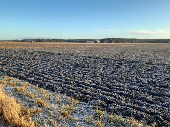 Peltomaisema, jossa pelto on käännetty syksyllä.