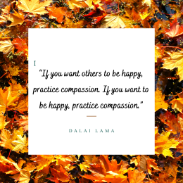 """""""If you want others to be happy, practice compassion. If you want to be happy, practice compassion."""" - Dalai Lama."""