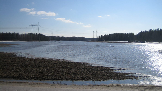 Lähes koknaan veden peittämä suuri ja avoin peltoalue. Vain etualalla maaperä näkyvissä.