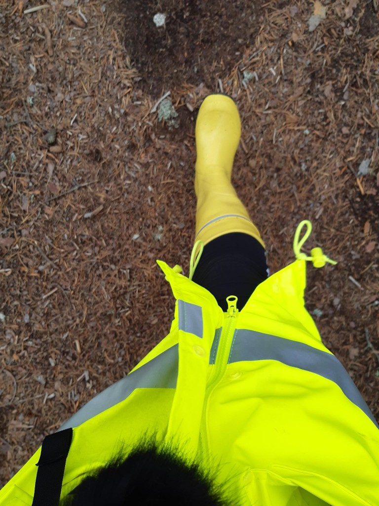 Kuva metsässä kävelevän henkilön jaloista. Maasto on havujen peittämää polkua, ja henkilöllä on yllään keltaiset kumisaappaat sekä neonkeltainen huomiotakki.