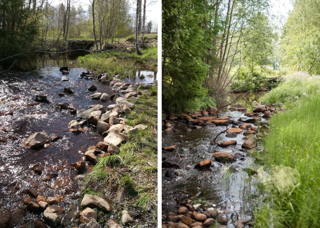 Kaksi kuvaa vierekkäin. Vasemmanpuoleisessa kuvassa virtaa puro, jonka vesi on noussut peittämään osittain kuvan oikeassa laidassa olevaa kasvillisuutta. Purossa olevat kuvat ovat suurilta osin veden peitossa. Oikeanpuoleisessa kuvassa puro on kuvattu lähes samasta kohdasta. Vesi ei ulotu kasvillisuuteen asti ja purossa olevat kivet ovat suurilta osin kuivia päältä.