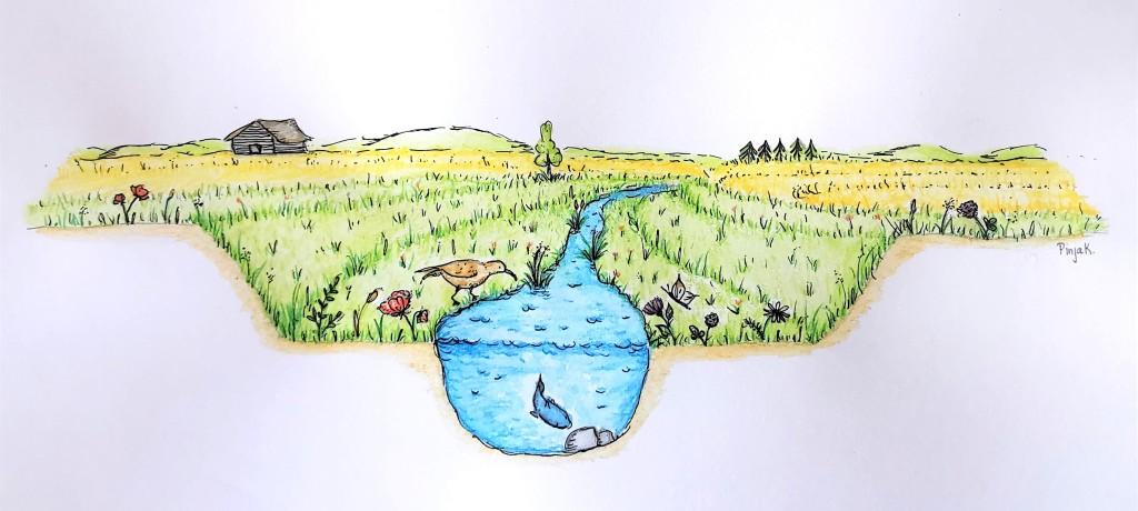Piirroskuva uoman rakenteesta. Uoman rakenne on kuvattu poikkileikkauksena. Tulvatasanteen kaksitasouoma on kuvattu niin, että uoman molemmilla puolilla on edellä kuvattu tasanne. Molemmat tasanteet ovat kasvillisuuden peitossa.